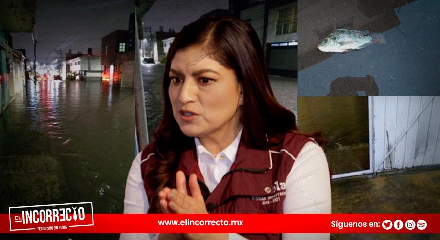 Inundados, entre basura y enfermedades Claudia Rivera tiene a vecinos del sur
